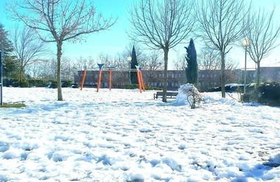 /media/noticias/fotos/pr/2021/01/16/boadilla-del-monte-una-semana-despues-de-la-gran-nevada_thumb.jpg